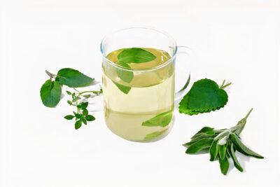 חליטת תה ירוקלה